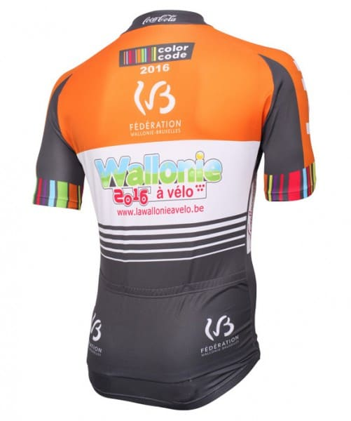 Maillot Color Code-Arden'Beef 2016 dos