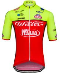 Maillot Wilier Triestina-Selle Italia 2018