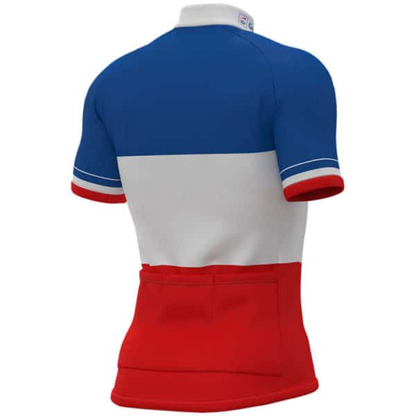Maillot Champion France 2018-2019 dos